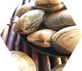 2種類の甲殻類と3種類の貝エキス